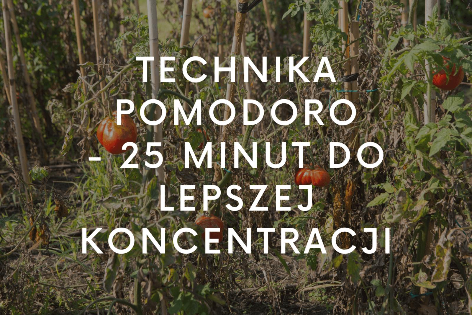 Technika Pomodoro - 25 minut do lepszej koncentracji